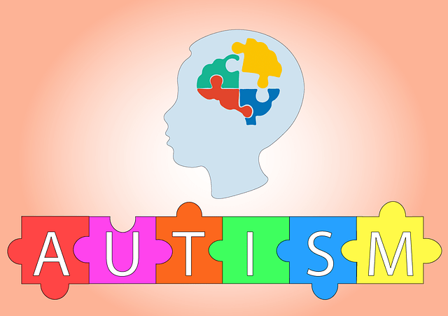 Autism and the mind